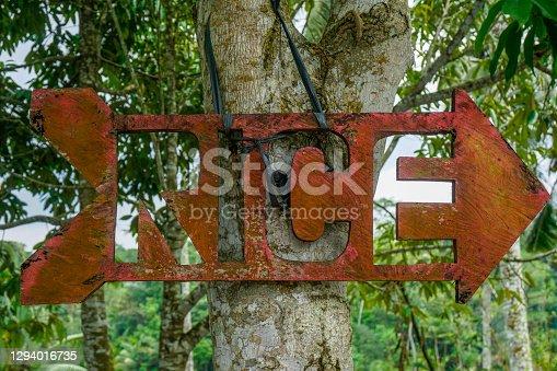 Rice field pointer on tree