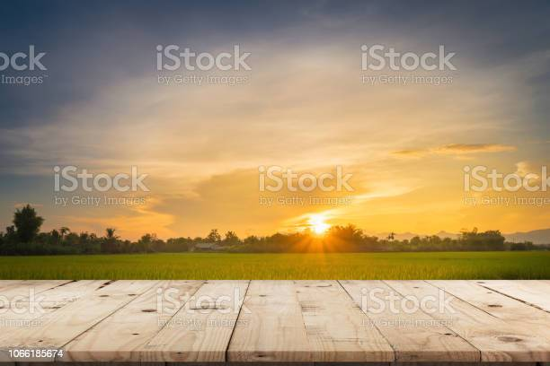 Rice field sunset and empty wood table for product display and picture id1066185674?b=1&k=6&m=1066185674&s=612x612&h=bs8m3obwamqeapbsqex2 wlcneqyu8knfirchyf  hy=
