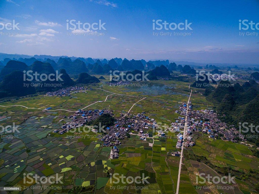 Campos de arroz no pôr do sol, guilin, china foto de stock royalty-free