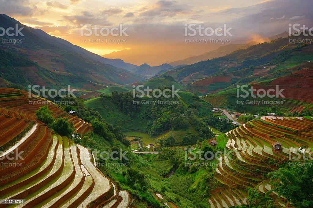 Rice fields on terraced in rainny season at Vietnam. stock photo