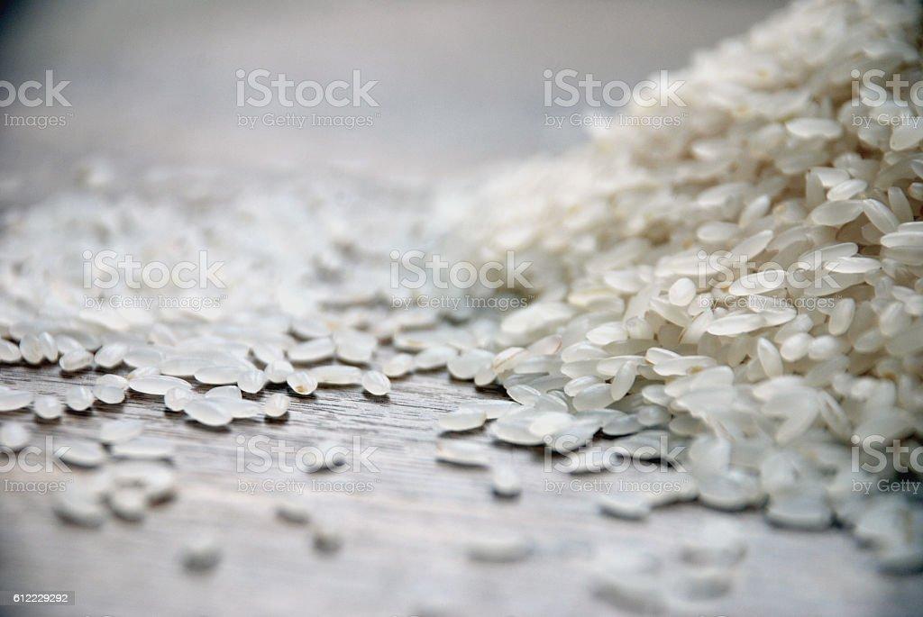 rice grains stock photo