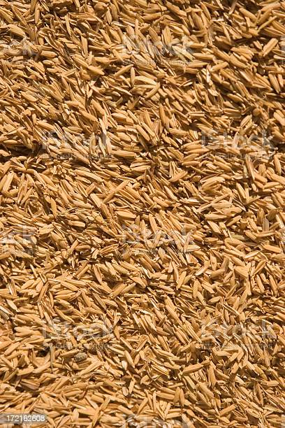 Rice husks