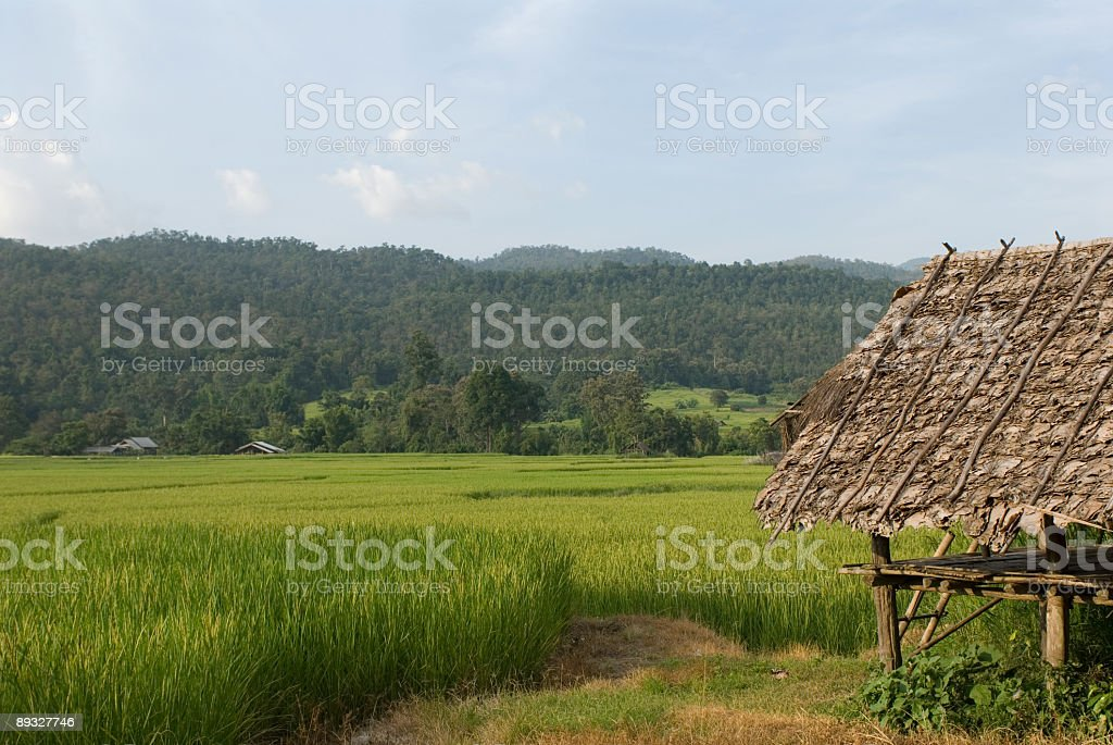 Rice Hut royalty-free stock photo