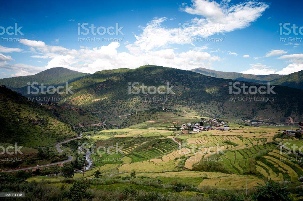 Rice paddies outside Wangdue stock photo