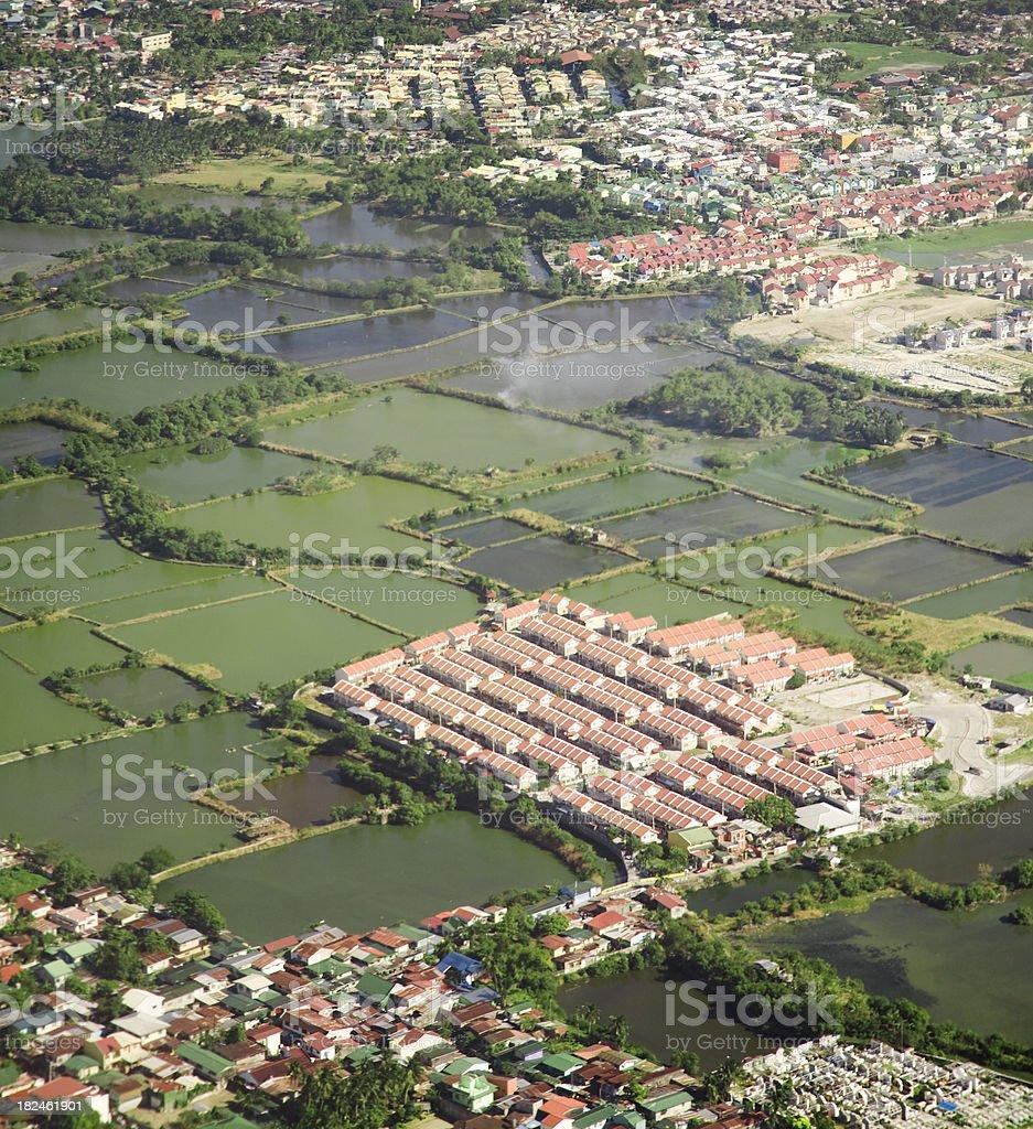 Rice Paddies, Philippines royalty-free stock photo