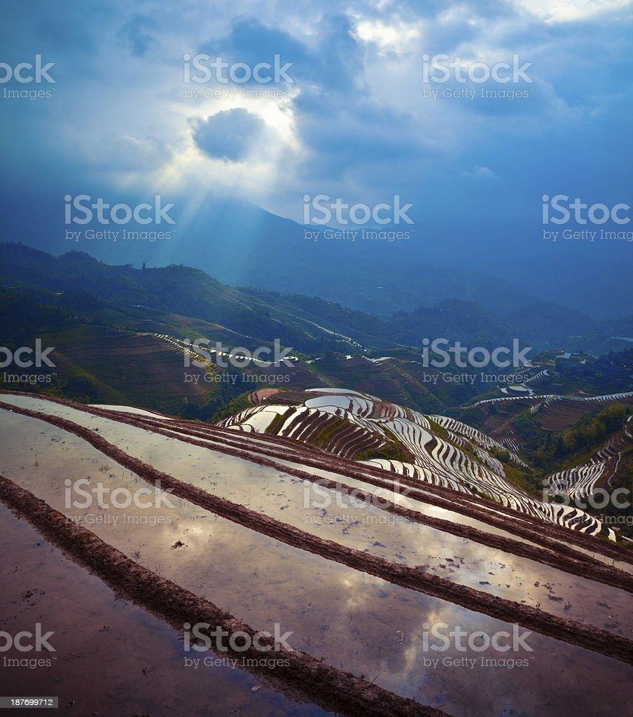 Rice paddy in Longsheng stock photo