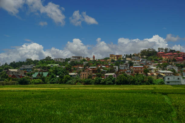 Rice Paddy or Field in Antananarivo on the African Island of Madagascar stock photo