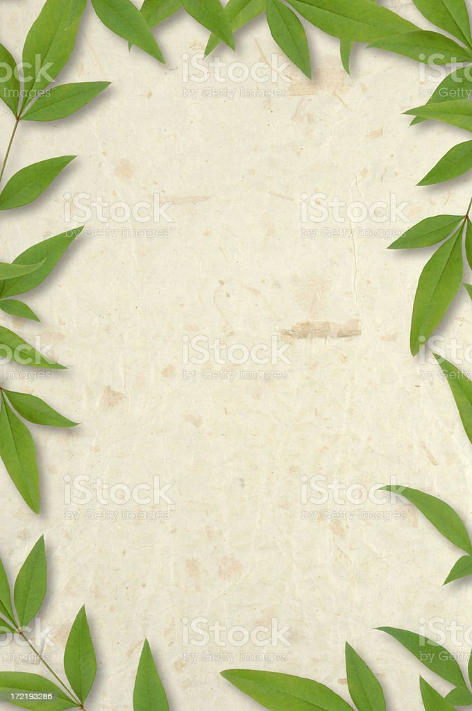 Rice Paper and Leaves stock photo