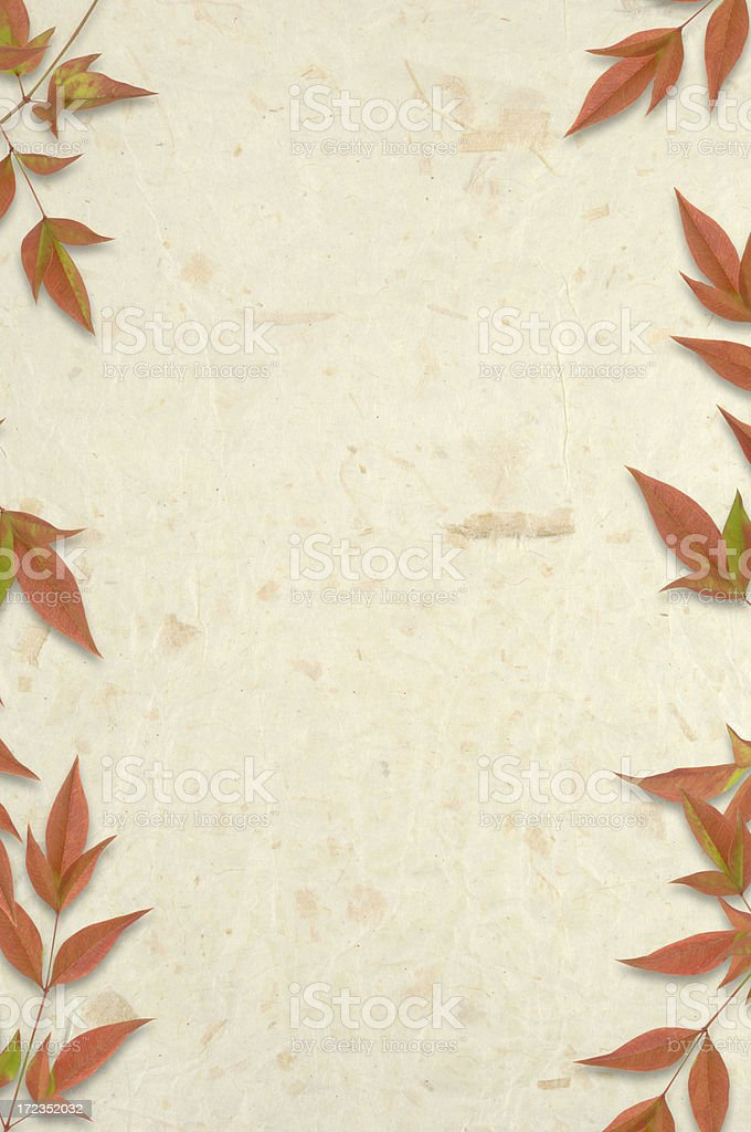 Rice Paper and Leaves royalty-free stock photo