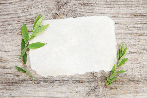 Rice paper blank. stock photo