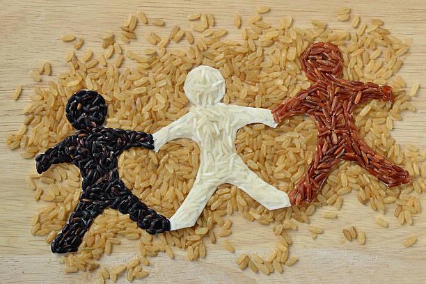 rice people chain - arroz comida básica fotografías e imágenes de stock
