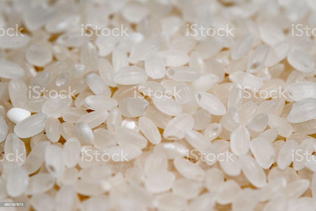 Rice Стоковые фото Стоковая фотография