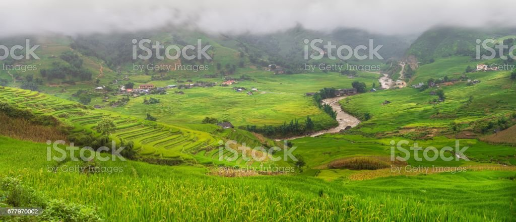 Rice rural field terraces at Sapa Vietnam. stock photo