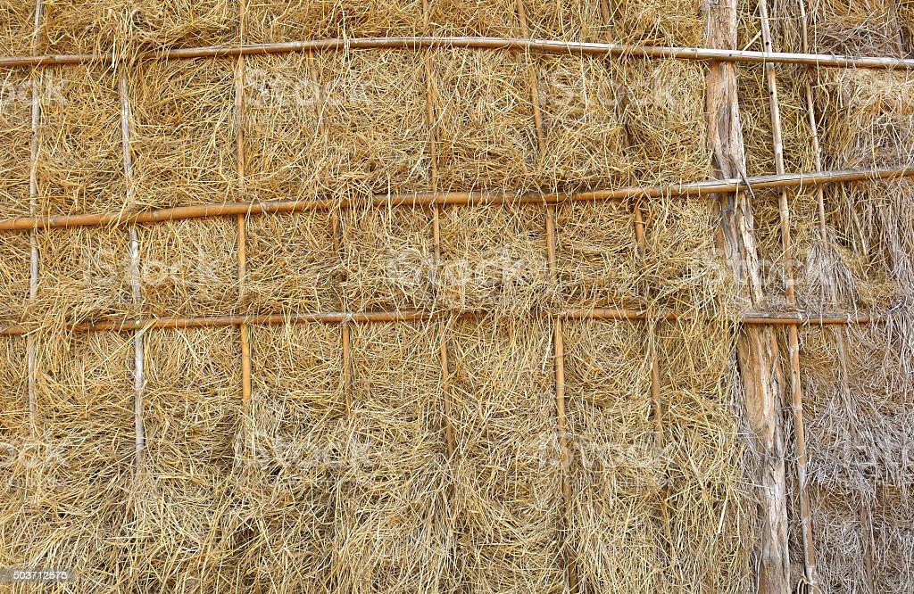 rice straw stock photo