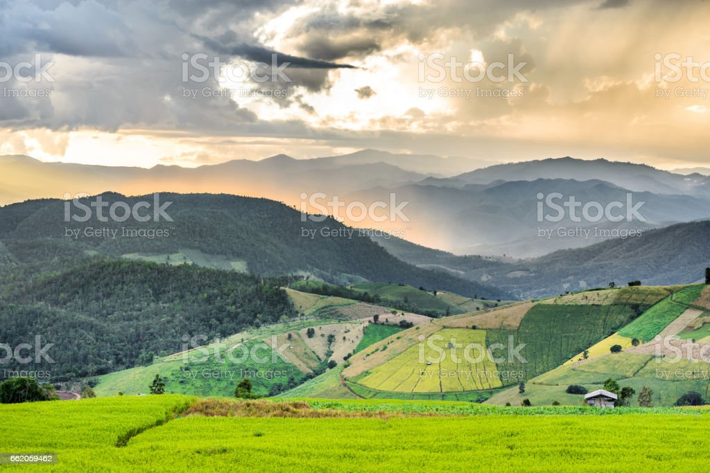 rice terrace and hut on the mountain hill with storm cloud and raining and light rays tyndall effect royalty-free stock photo