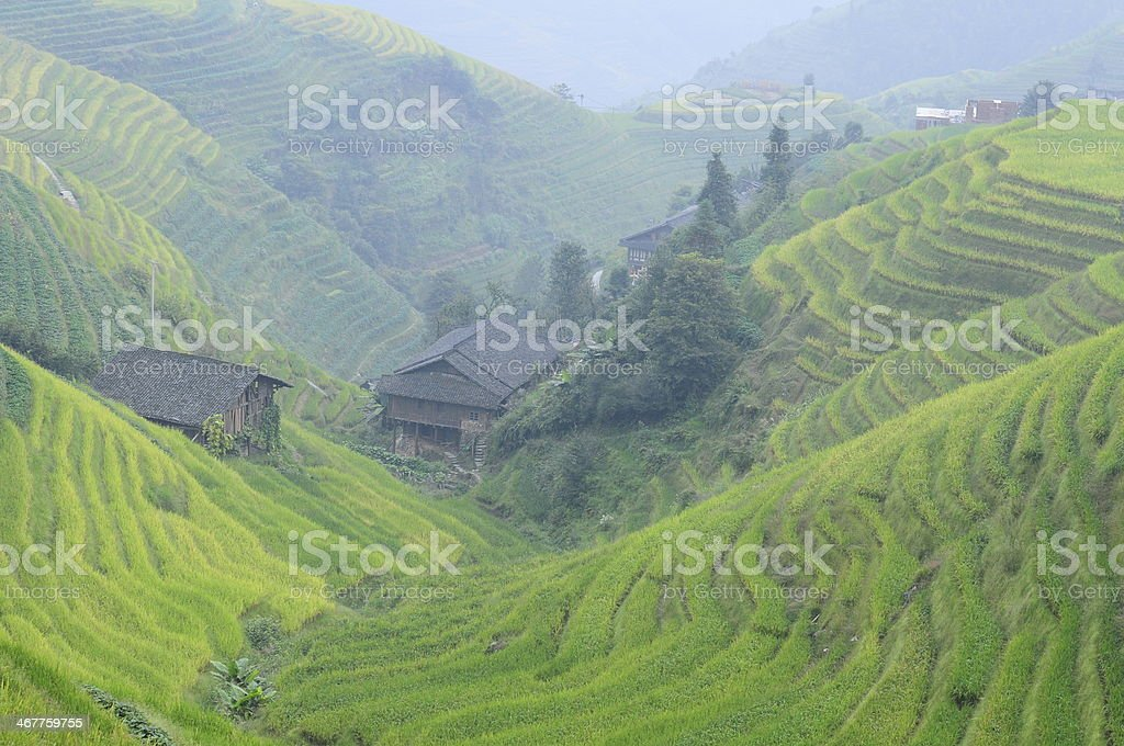 Rice terraces and village in China stock photo