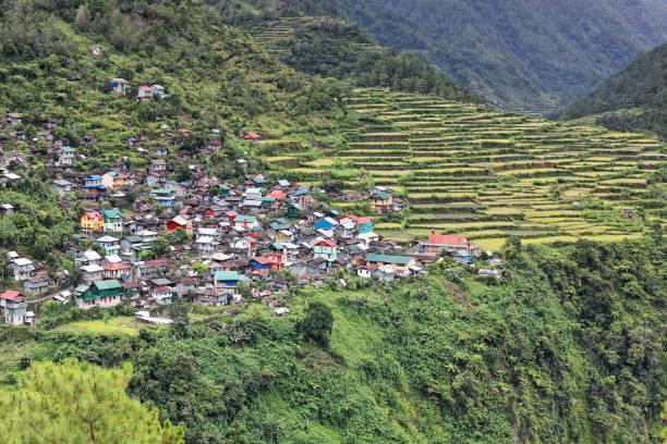 Reis-Terrassen in Bay-yo Barangay. Bontoc Gemeinde-Mountain Province-Philippinen. – Foto