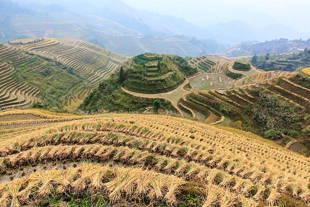 Rice terraces in Dazhai, Guangxi, China stock photo