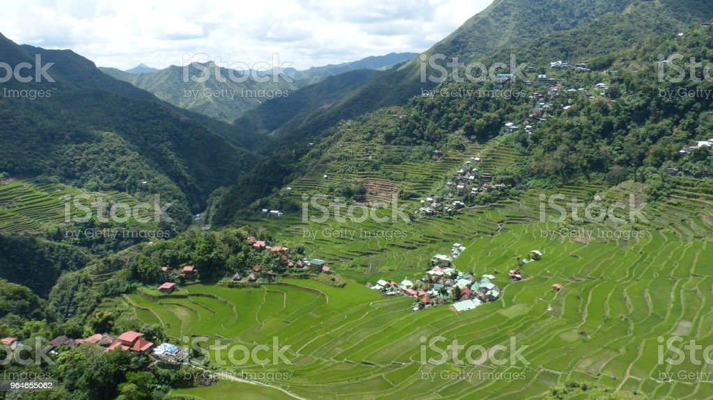 Rice terraces in philippines royalty-free stock photo