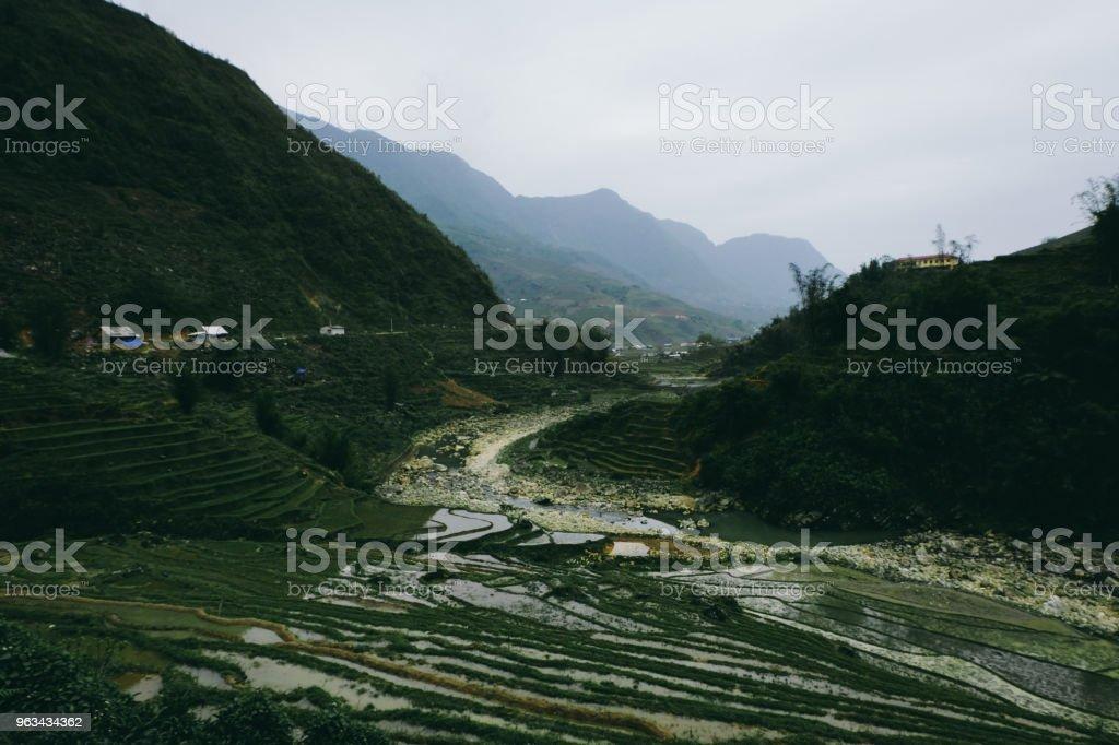 Rizières en terrasses du Nord du Vietnam - Photo de Agriculture libre de droits