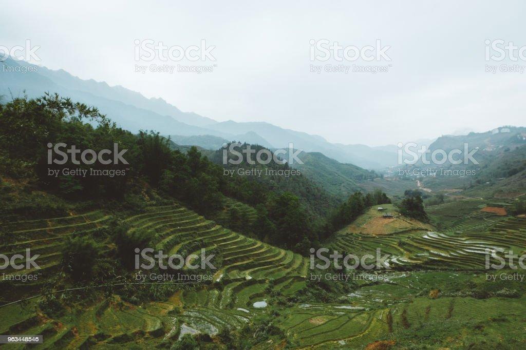 Pirinç terasları Kuzey Vietnam - Royalty-free Dağ Stok görsel