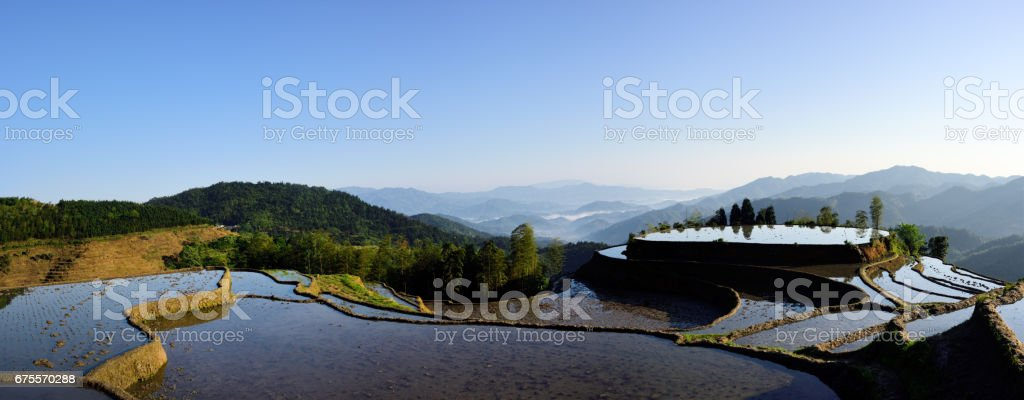Rice terraces,South East China stock photo