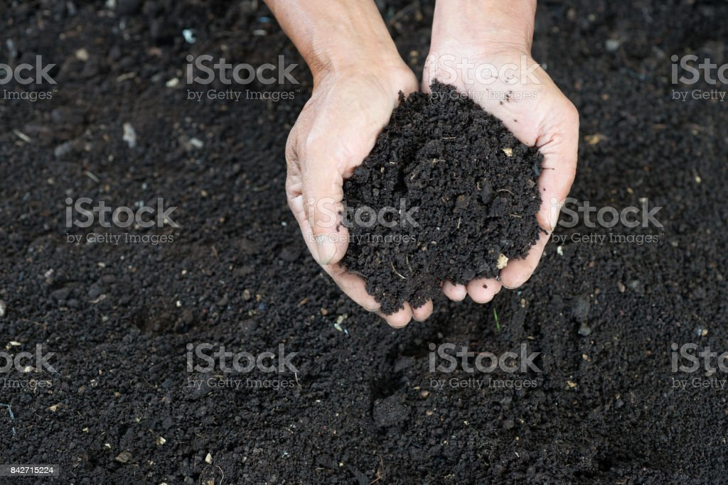 rich black soil stock photo