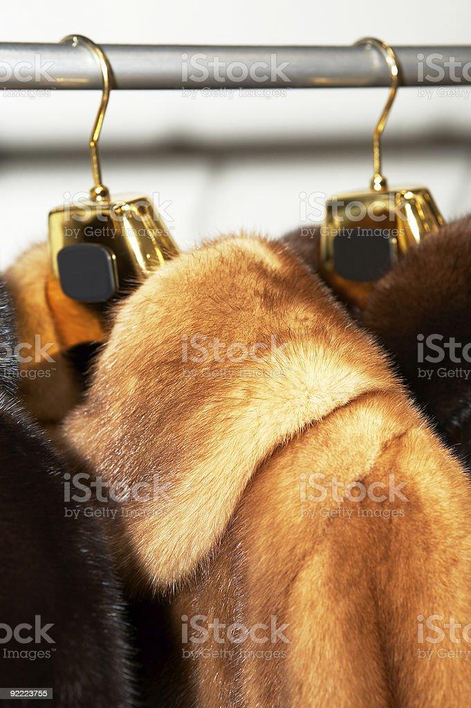 Rich female fur coats royalty-free stock photo