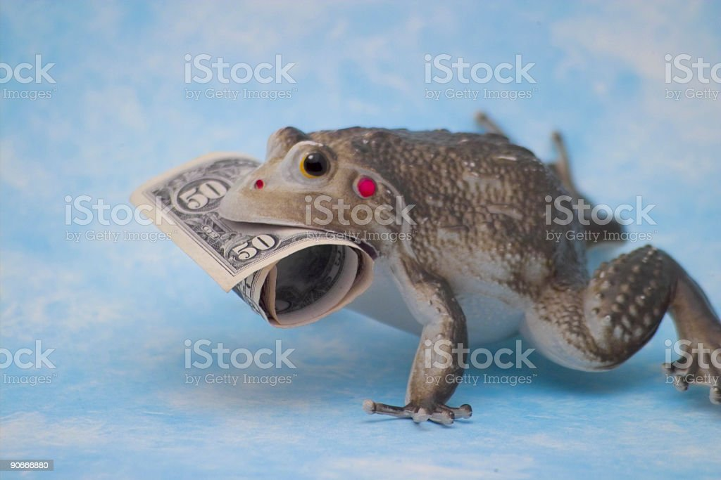 Rich Frog royalty-free stock photo