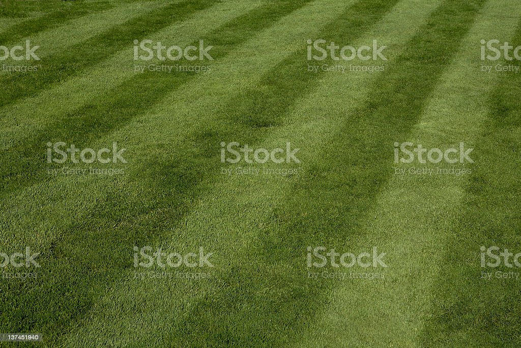 Rich Mowed Lawn stock photo