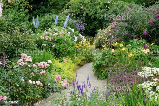 Richly planted flower garden picture id1164339400?b=1&k=6&m=1164339400&s=612x612&h=yxf3a47wj0egmufcj1q1cbw49qe6f1qdzxdofcstou8=