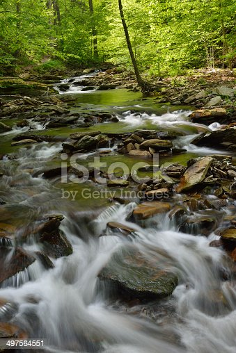 istock Ricketts Glen State Park in Spring 497564551