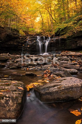 Fall colors at Ricketts Glen State Park