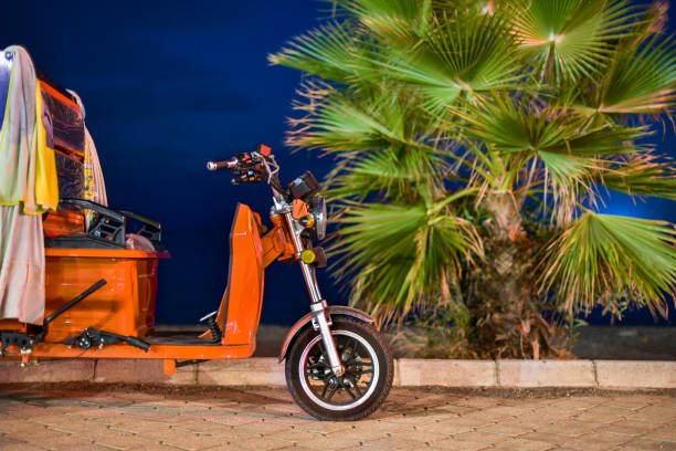 Rickshaw on night coast Rickshaw on night coast on background palm tree three wheel motorcycle stock pictures, royalty-free photos & images