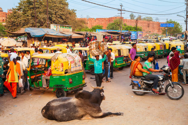 Rickshaws on the street, India AGRA, INDIA - APRIL 10, 2012: A lot of rickshaws on the street in Agra city, Uttar Pradesh state of India agra stock pictures, royalty-free photos & images