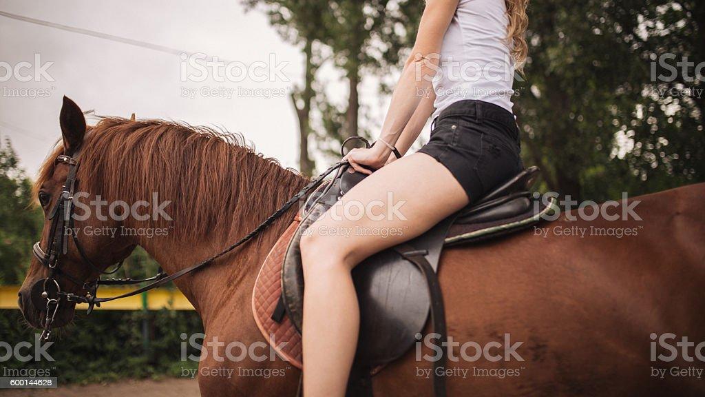 Ridding a brown stallion stock photo
