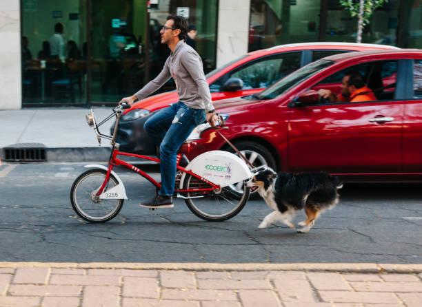 Fahren Sie mit Fahrrad, Mexiko-Stadt – Foto