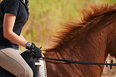 A cropped image of a woman rider on a chestnut horse