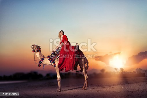 883177796istockphoto ride with the camel at sunset 512987356