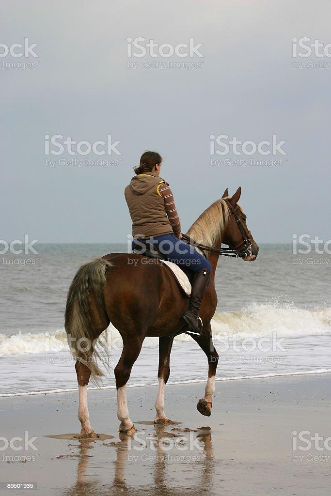 Rider at the beach royalty-free stock photo