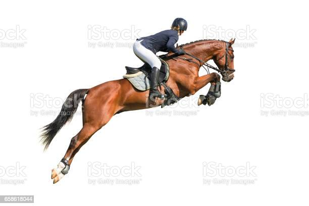 Rider isolated on white background picture id658618044?b=1&k=6&m=658618044&s=612x612&h=dyie4jy3r7hfoyy ym8dowdk73sfwxspu6pxx2jygik=