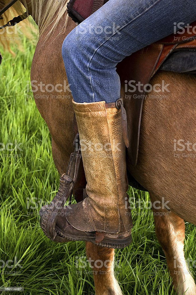 Rider on a horse - detail stock photo