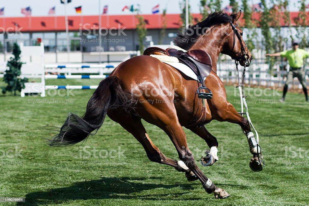 Riderless Horse stock photo