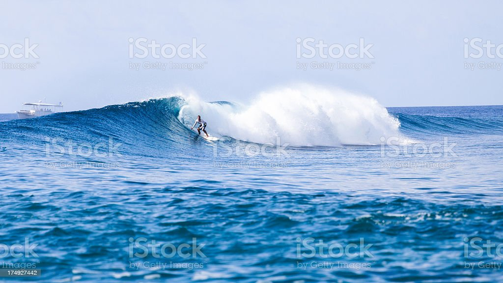 Riding a big wave royalty-free stock photo