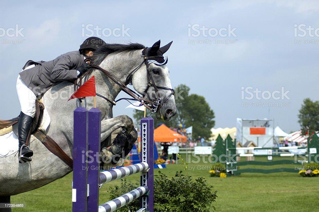 Montar a caballo foto de stock libre de derechos