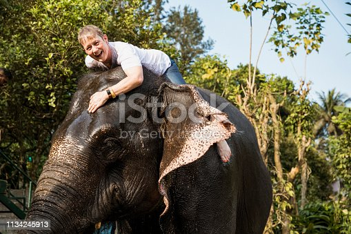 A low-angle view of a caucasian woman riding an excited indian elephant, the elephant can be seen shooting water out of it's trunk and up into the air in Kerala, India.