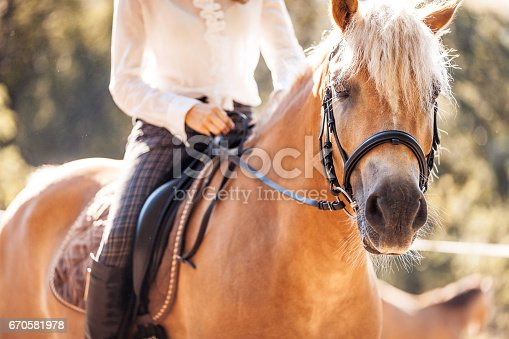 istock Riding and Petting the Horse 670581978