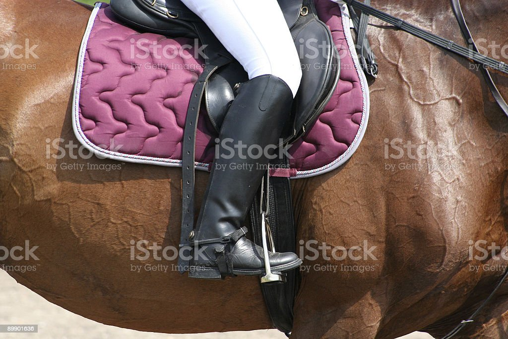 Riding Boot-Detailshot on Horse royalty-free stock photo