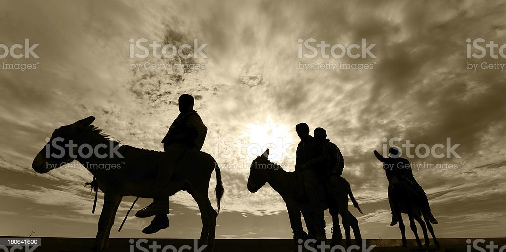 Riding donkeyes royalty-free stock photo
