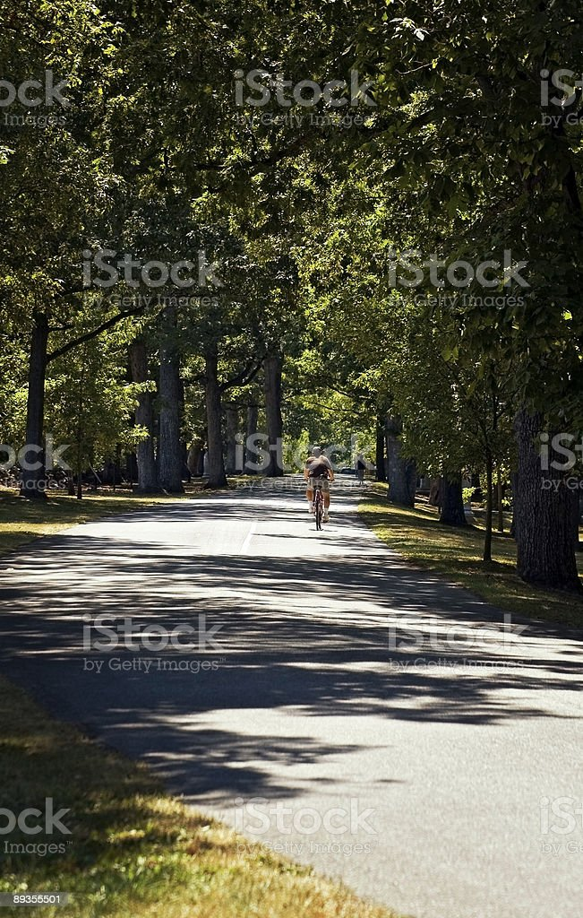 Riding Down the Road Gettysurg Pennsylvania royalty free stockfoto